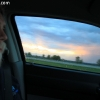 springfield_5916