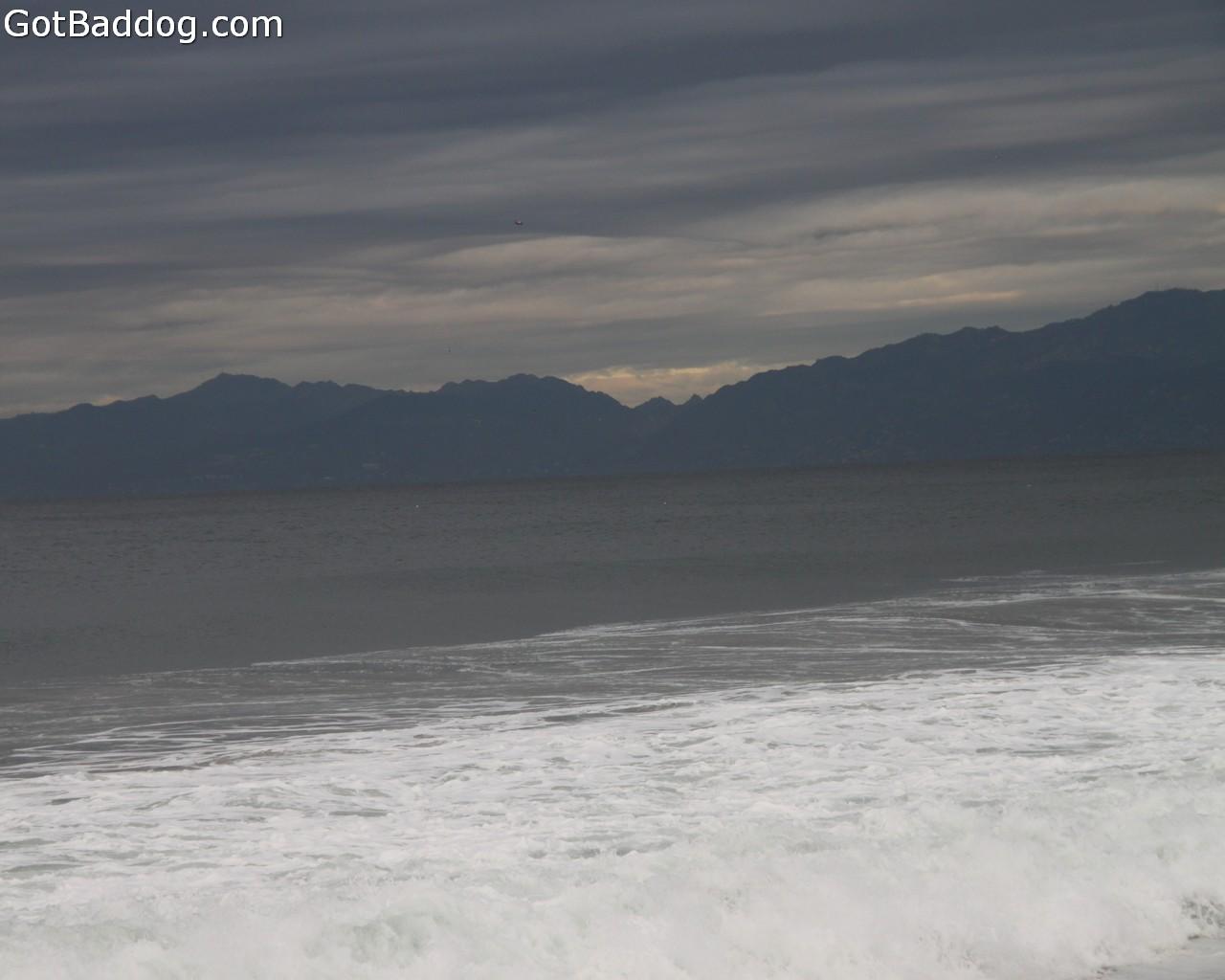 surf_1071