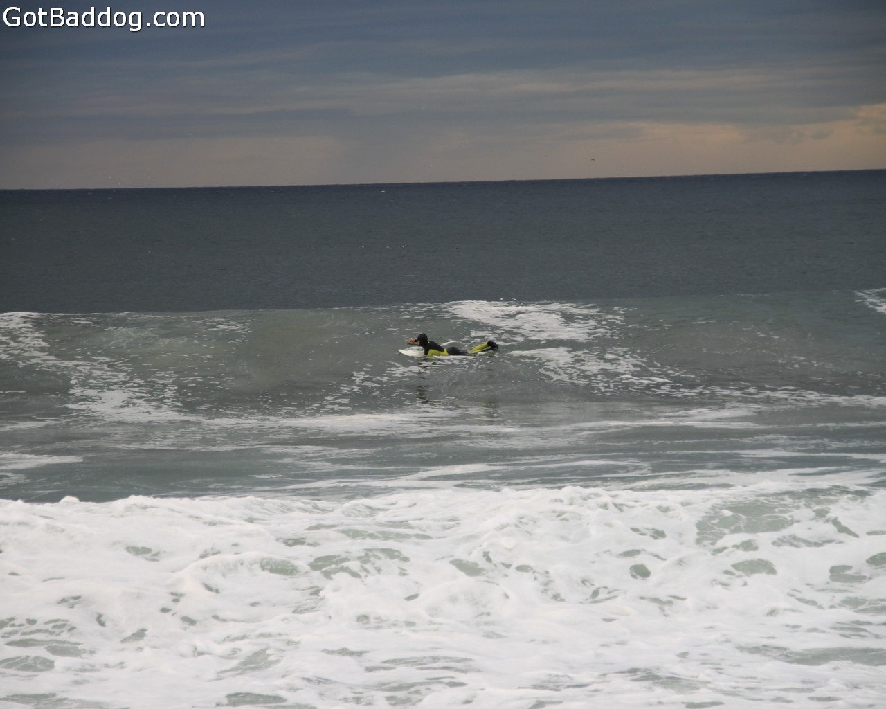 surf_1073