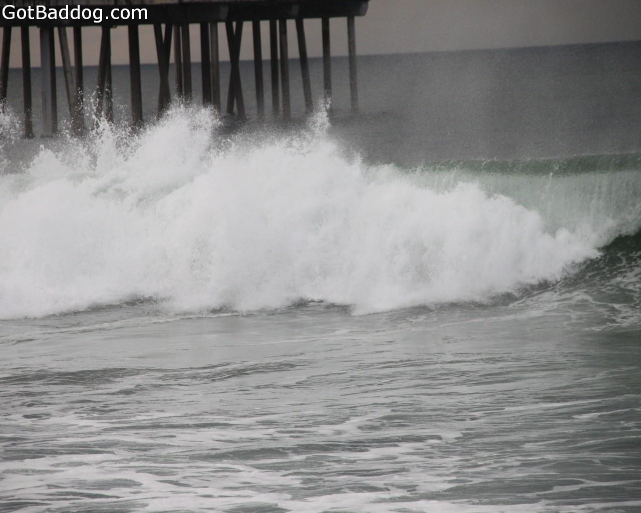 surf_1086
