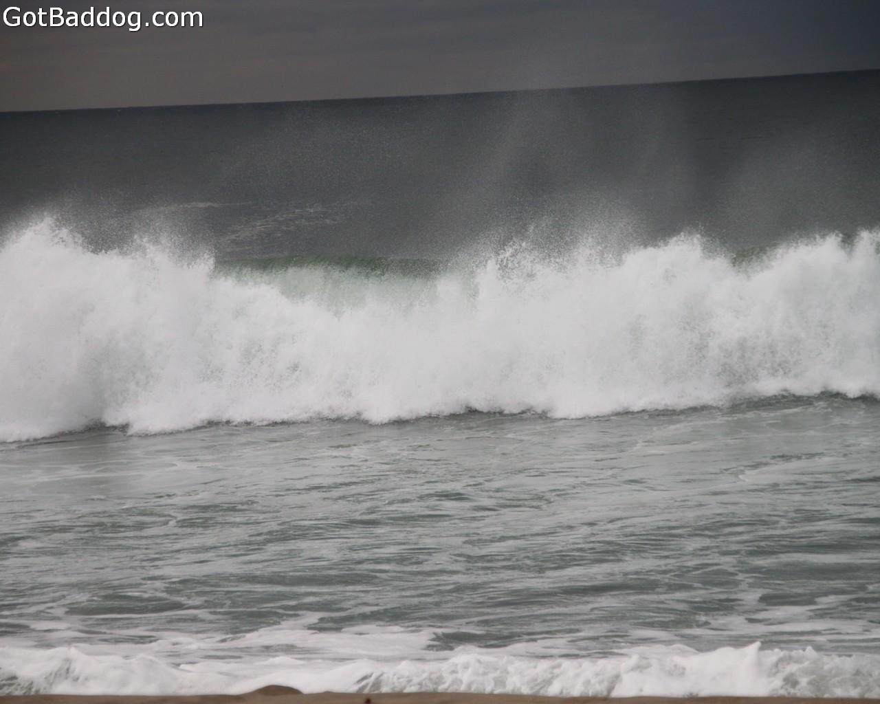 surf_1088