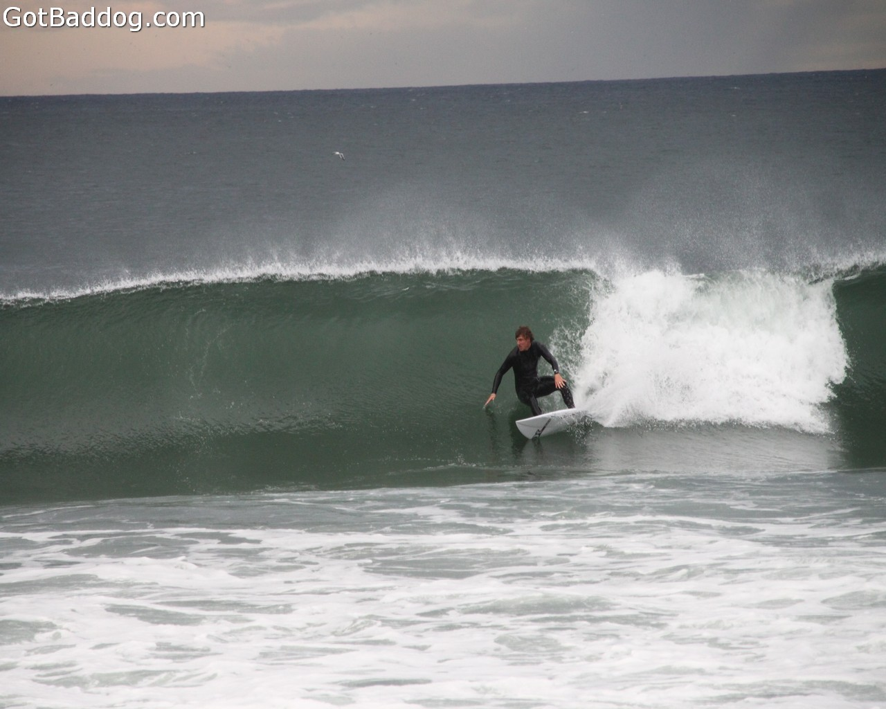 surf_1091