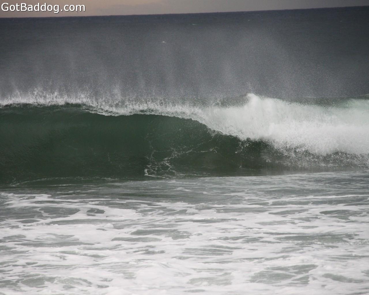 surf_1093