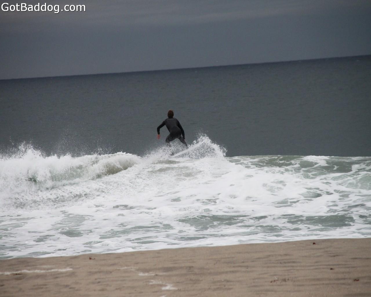 surf_1125