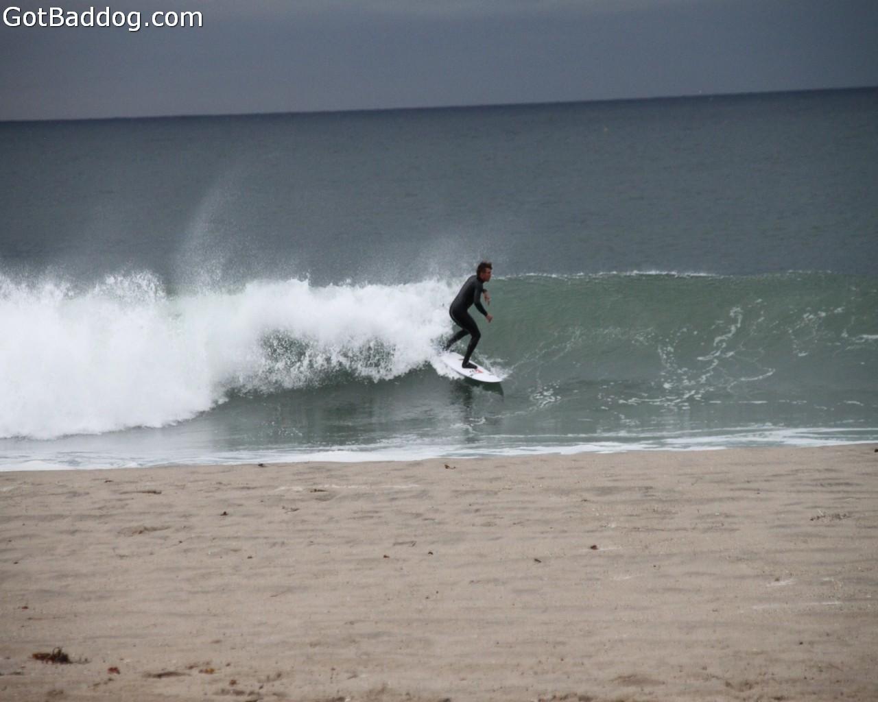 surf_1136