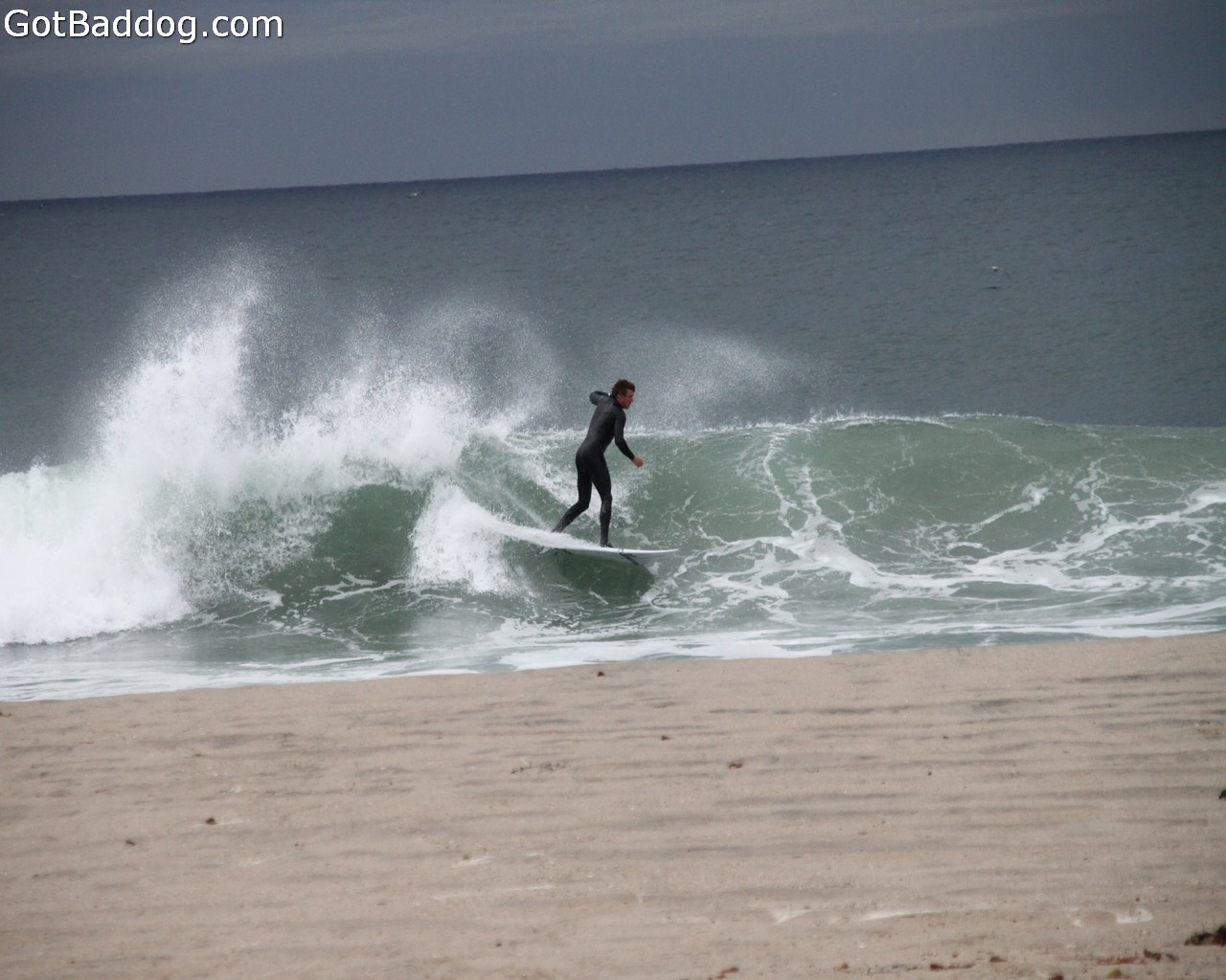 surf_1139