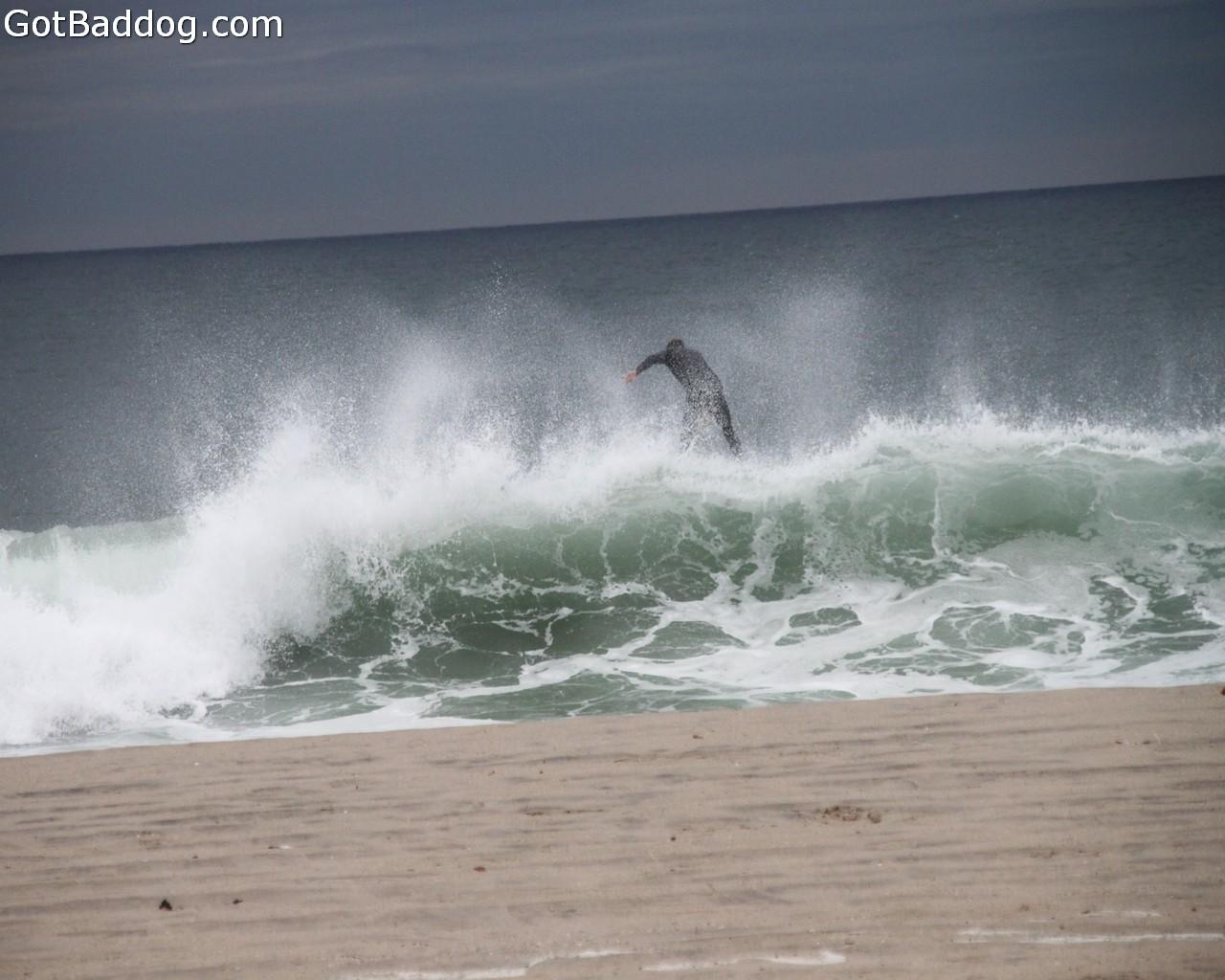 surf_1144