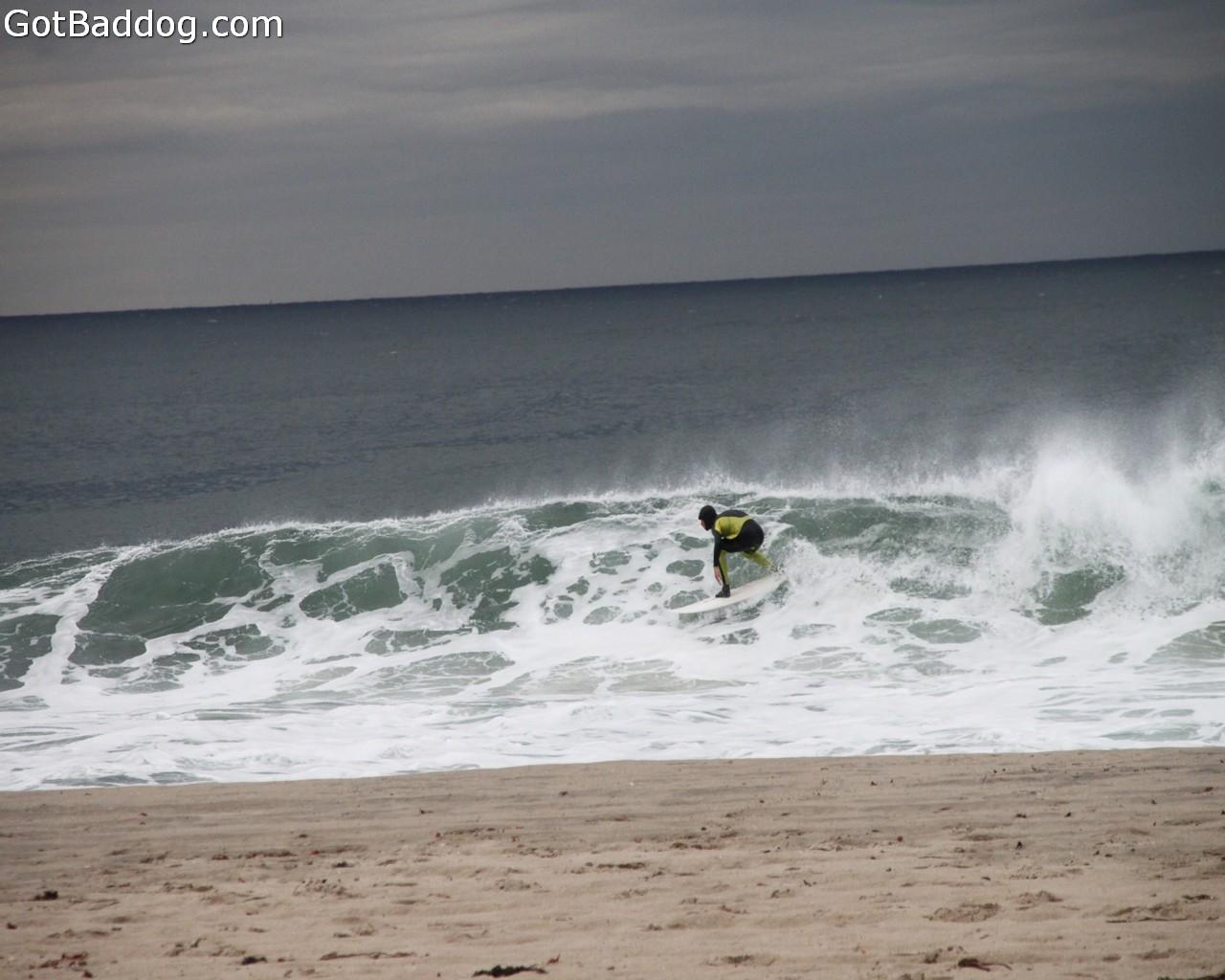 surf_1147