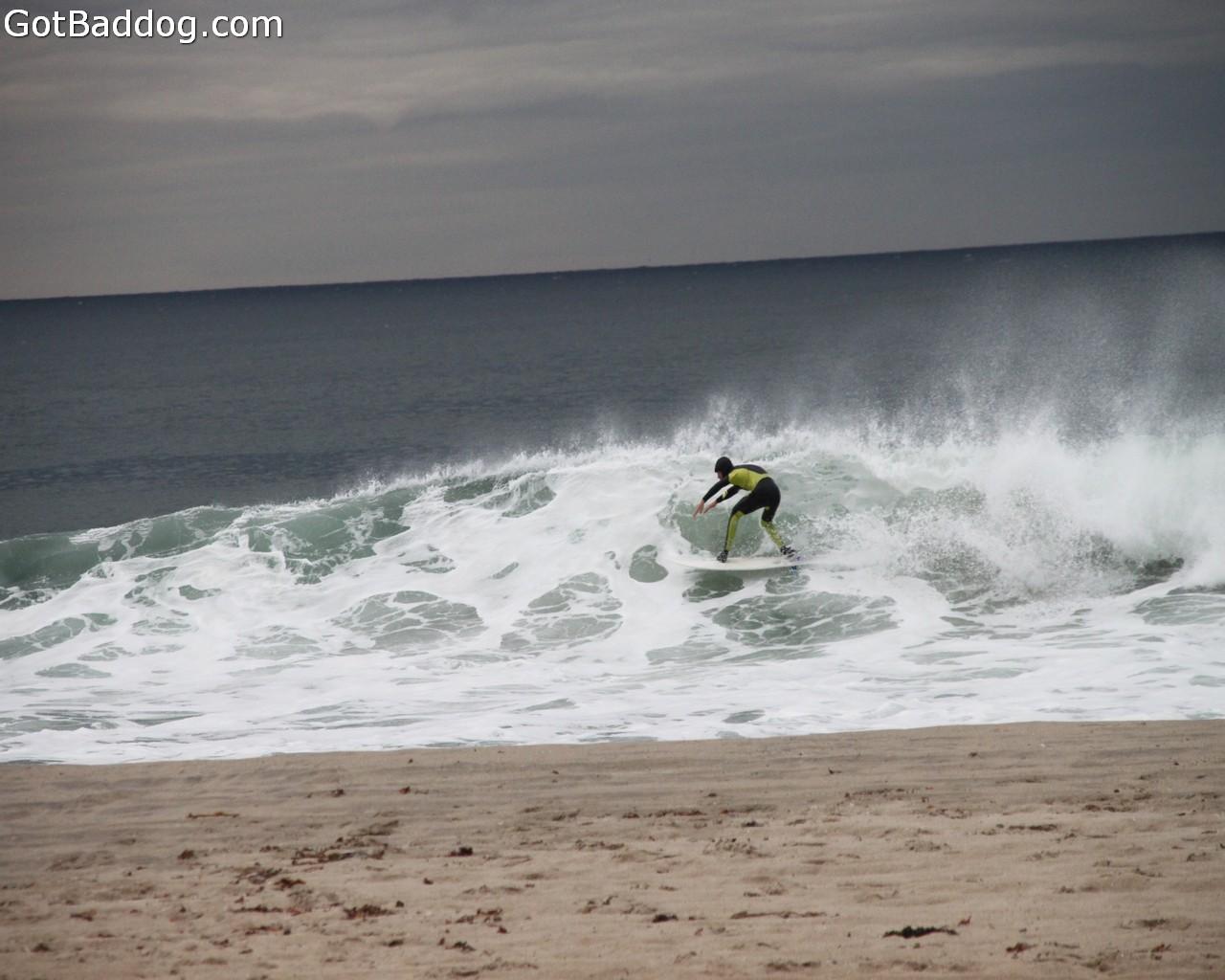 surf_1149