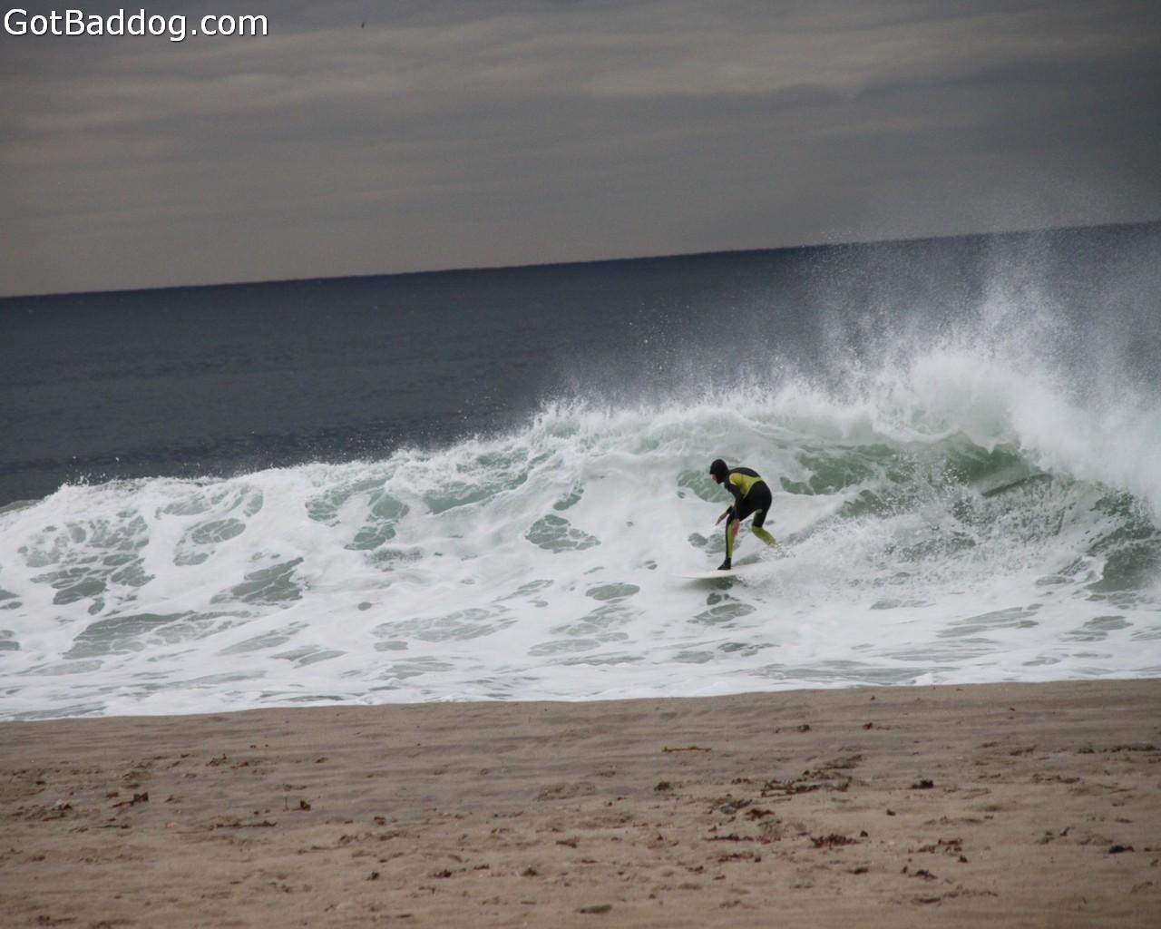 surf_1151