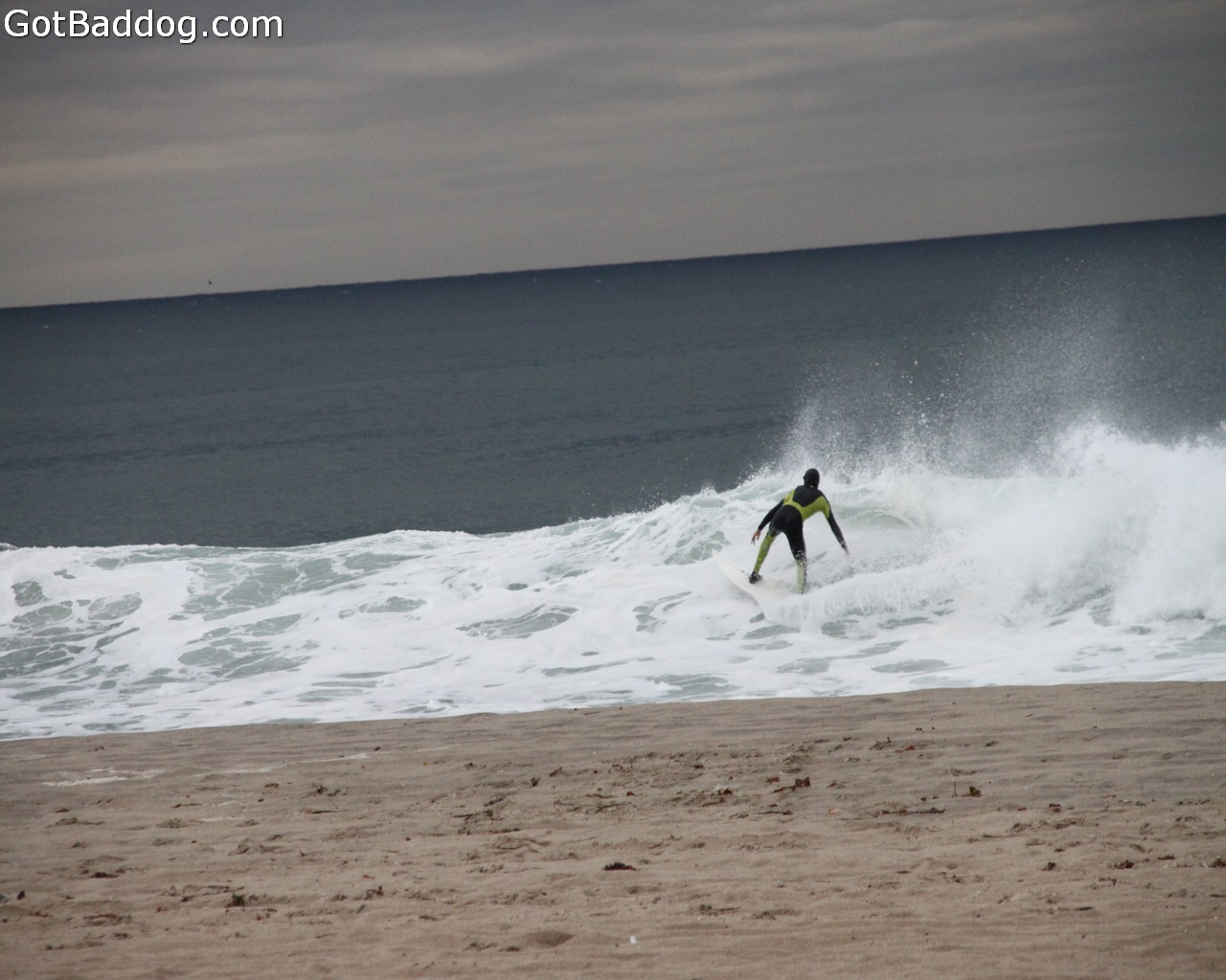 surf_1153