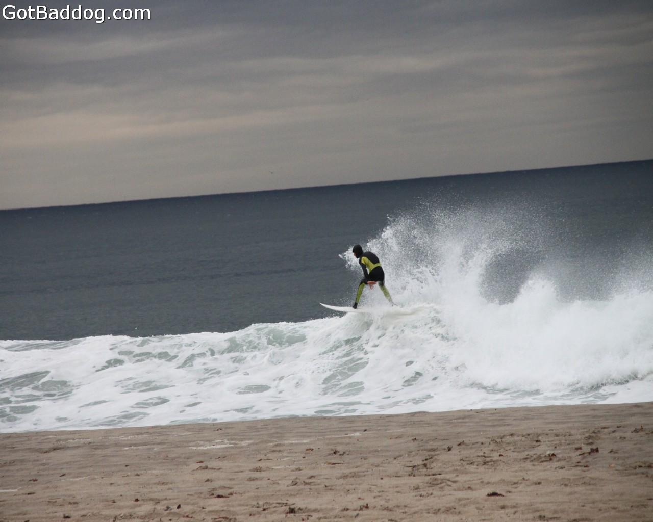 surf_1155