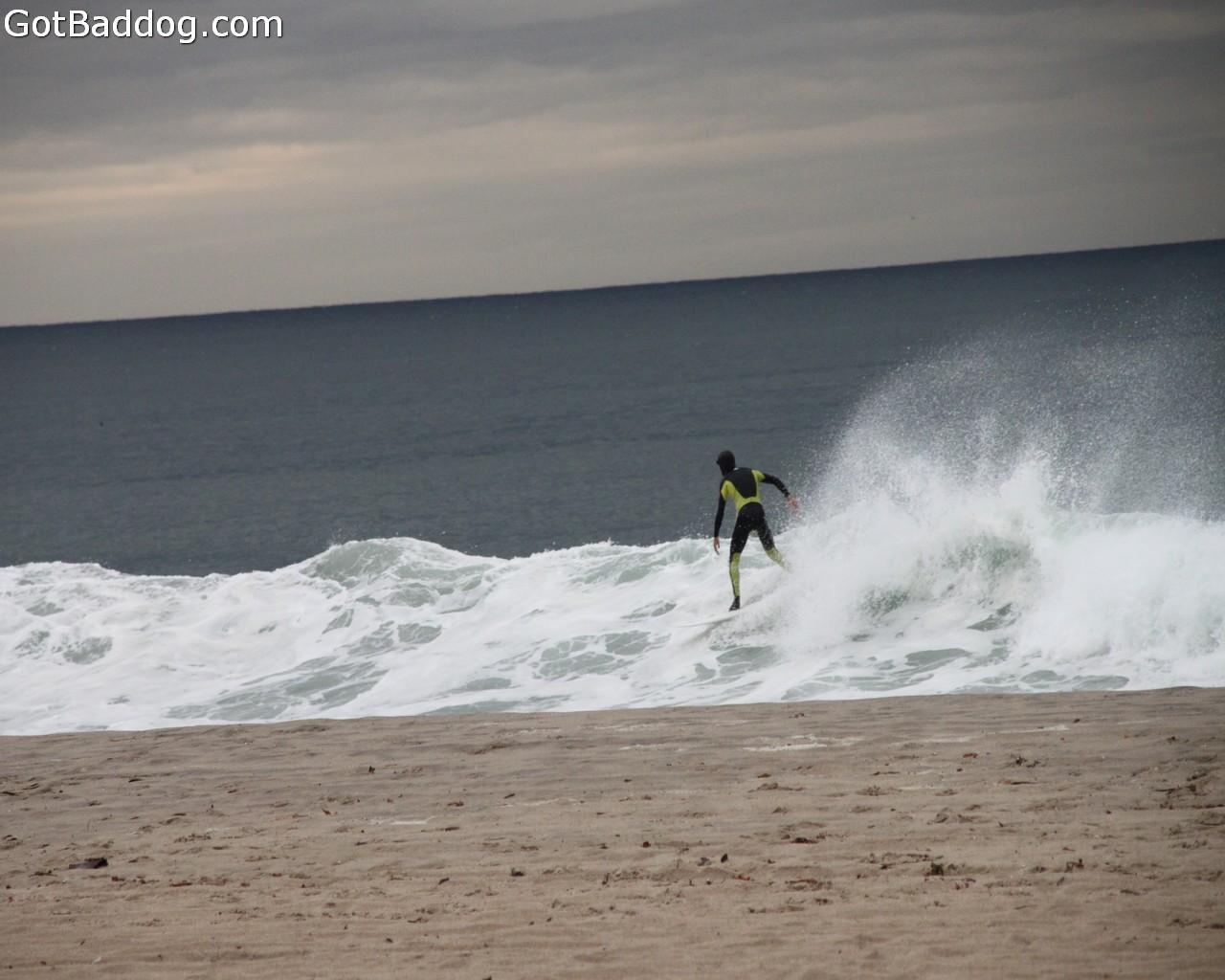 surf_1157