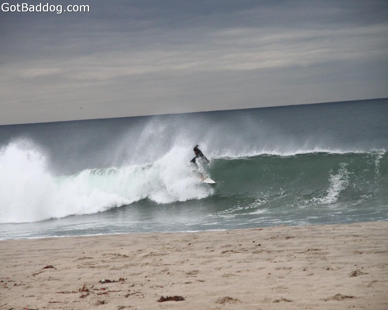 surf_1164