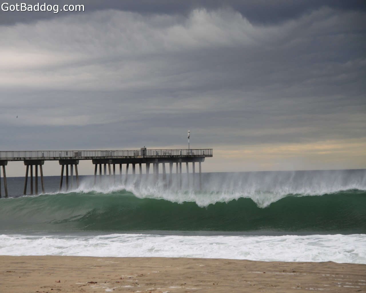 surf_1168