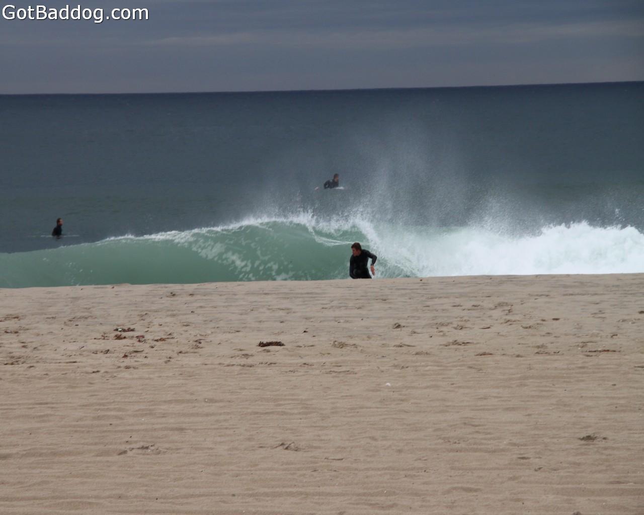surf_1204
