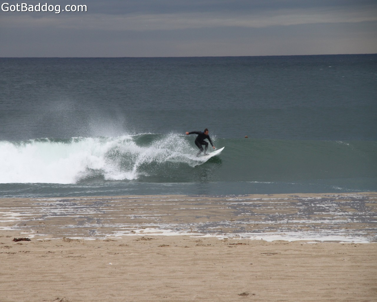 surf_1242
