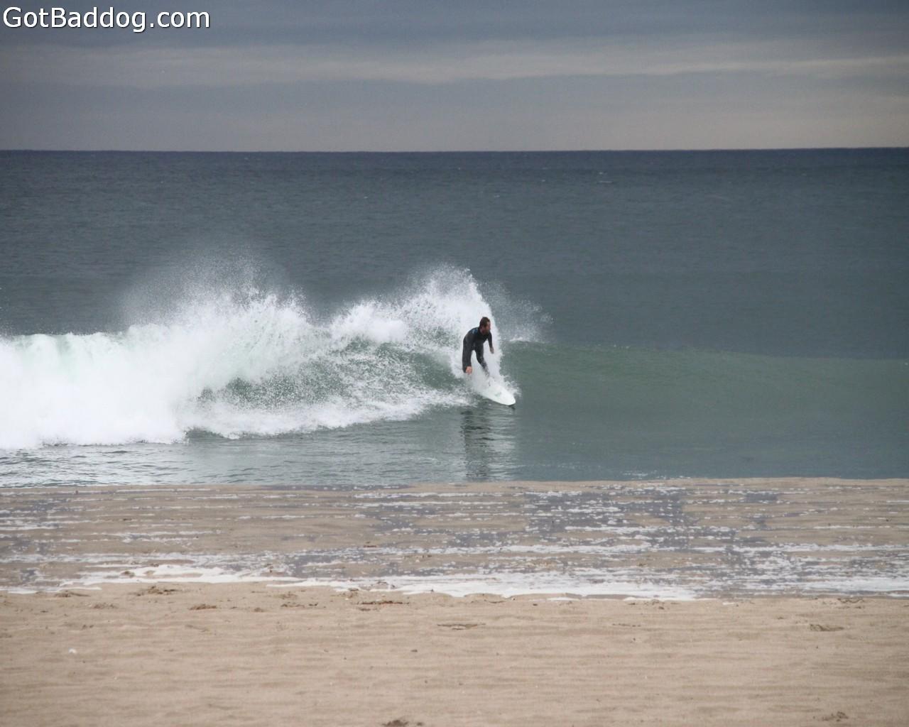 surf_1244