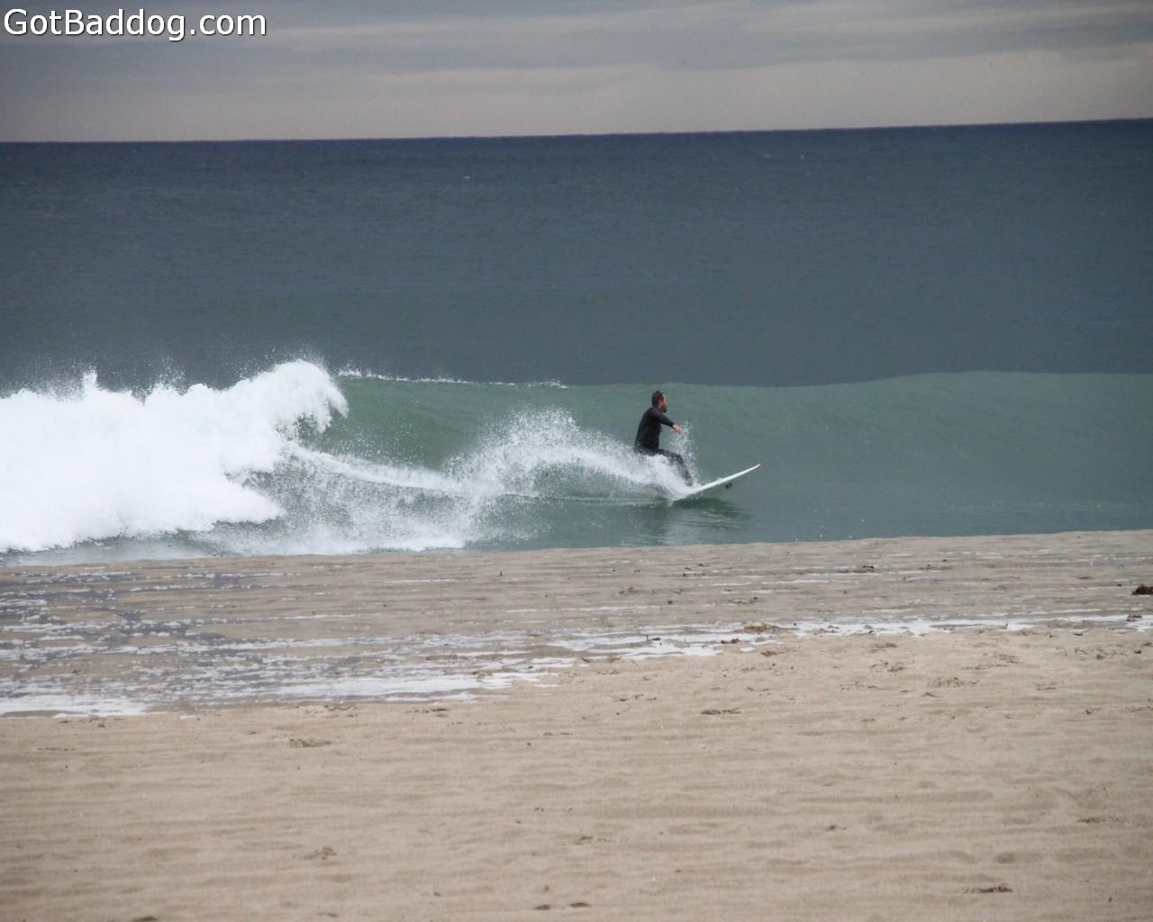 surf_1249