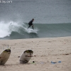 surf_1327