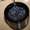 berrybash_0486
