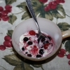 berrybash_0633