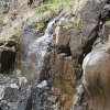 yellowstone_4796