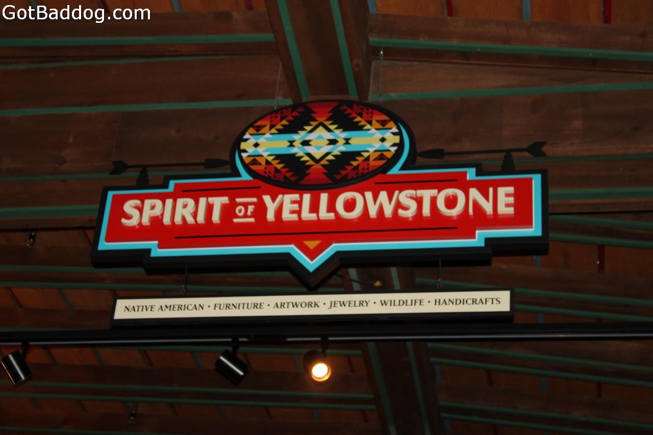 yellowstone_4842