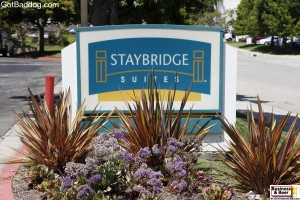 Staybridge Suites, Torrance