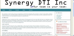 Synergy-DTI home page